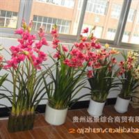 【高仿真】盆景、花艺【批量供应】【设计定做】尽在贵州远景