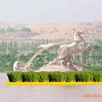 芦苇种植厂