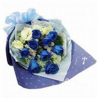 宁德花店 9枝 蓝玫瑰 蓝色妖姬 七夕情人节 圣诞节 生日鲜花 N011