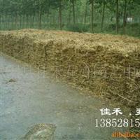 供应稻草、打包稻草秸秆、粉碎小麦秸秆、粉碎稻草秸秆