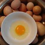 纯天然放养野生养殖土鸡鸡蛋