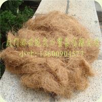 供应优质棕丝(用于生产床垫坐垫)天然棕丝