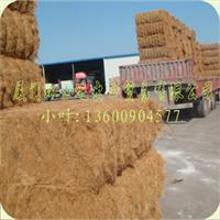 供应优质印尼与菲律宾的棕丝