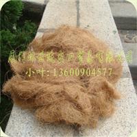 上海现货供应质量好的精梳椰棕丝