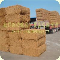 供应优质菲律宾椰棕(用于椰棕花篮、床垫与绳子)