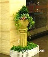 成都植物租赁租摆【林邦】告诉您盆栽香龙血树长不好该怎么办?