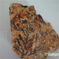 供应草叶化石