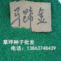 555739
