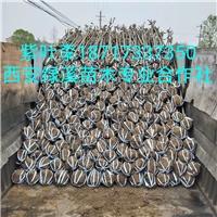 供应陕西紫叶李【红叶李】3公分厂