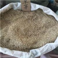 辽宁省 高羊茅种子 发芽率85% 净度98%