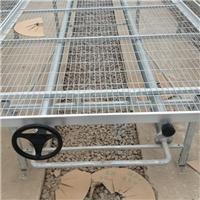 温室育苗-K1-02移动苗床报价-华耀农业