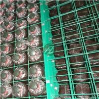 航迪蘑菇架大量批发-安平浸塑蘑菇网片