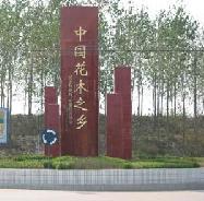江苏沭阳锦瑞园林