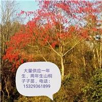 贵州省松桃武陵特种养殖综合开发有限公司