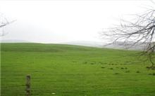 土壤对草坪的影响