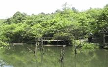 玉舍国家森林公园旅游