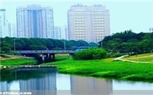 城市景观中人工河流的生态功能