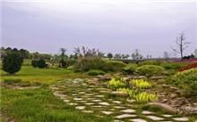 河南园林植物的种植条件