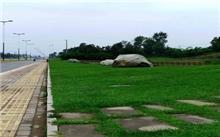 杭州:私改绿化带为水泥地罚款400元