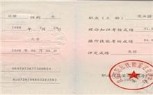 广州:绿化处罚权改由林业部门行使