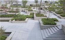 商丘:植树造林 绿化家园
