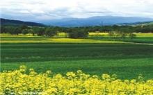福建:加强生态保护 推进绿色发展