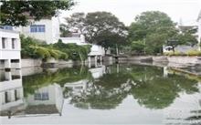 西宁市城北区加快城乡绿化步伐改善群众生活环境