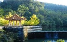 广东:南雄构建立体林业绿色惠民