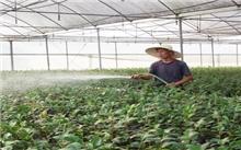江西:全南县林业局开展抗旱保苗工作