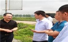 潍坊市领导到安丘检查指导雨季植树造林工作