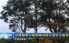 江苏:修剪遮挡标志树木 消除道路安全隐患
