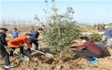 辽宁:2011年抚顺市全民义务植树活动成效显著
