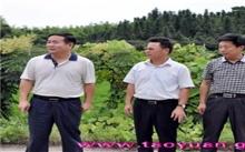 天津:林业发展整体步入快车道