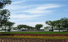 首届中国绿化博览会将举行