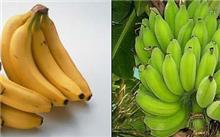 芭蕉营养|香蕉营养|营养价值比较