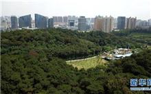 南宁市争创国家森林城市