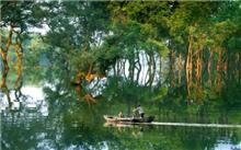 高质量森林资源构筑高品位生态环境