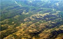 干旱地区造林技术措施