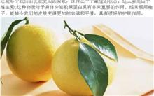 柚子的作用