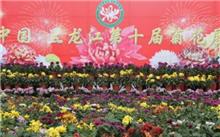 第十届中国菊花展开幕