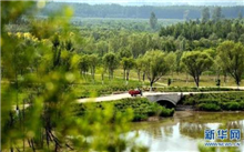 北京平原造林新增城市森林逾万亩