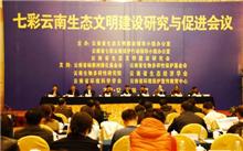 云南:新布局,努力成为生态文明建设的排头兵,生态文明建设的研究