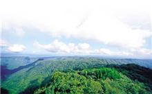 湖南:新华网被评为全国林业示范县