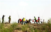 内蒙古:32年植树15.51亿