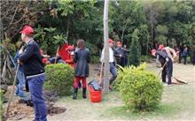 """河北:廊坊""""关爱自然义务植树""""志愿者协助造林"""