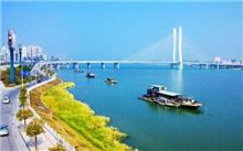 惠州:城市树木卫星定位管理