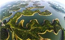 湖北荆州区完成种植139万英亩的森林面积5602
