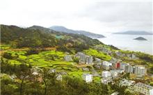 江西永新县村庄绿化,打造生态村
