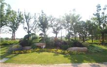 昆明晋宁投十万元,改造和提升绿化景观质量等级