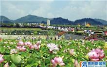 """山东:蓬莱""""生态城市""""巧打生态品牌,推进绿色发展"""